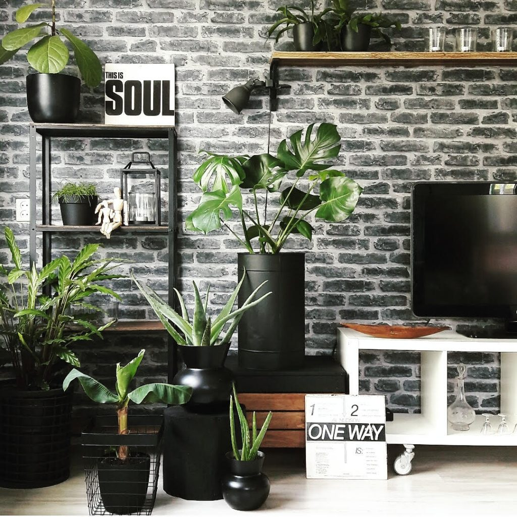 urban jungle interieur