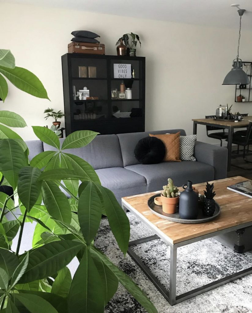 Stoer interieur