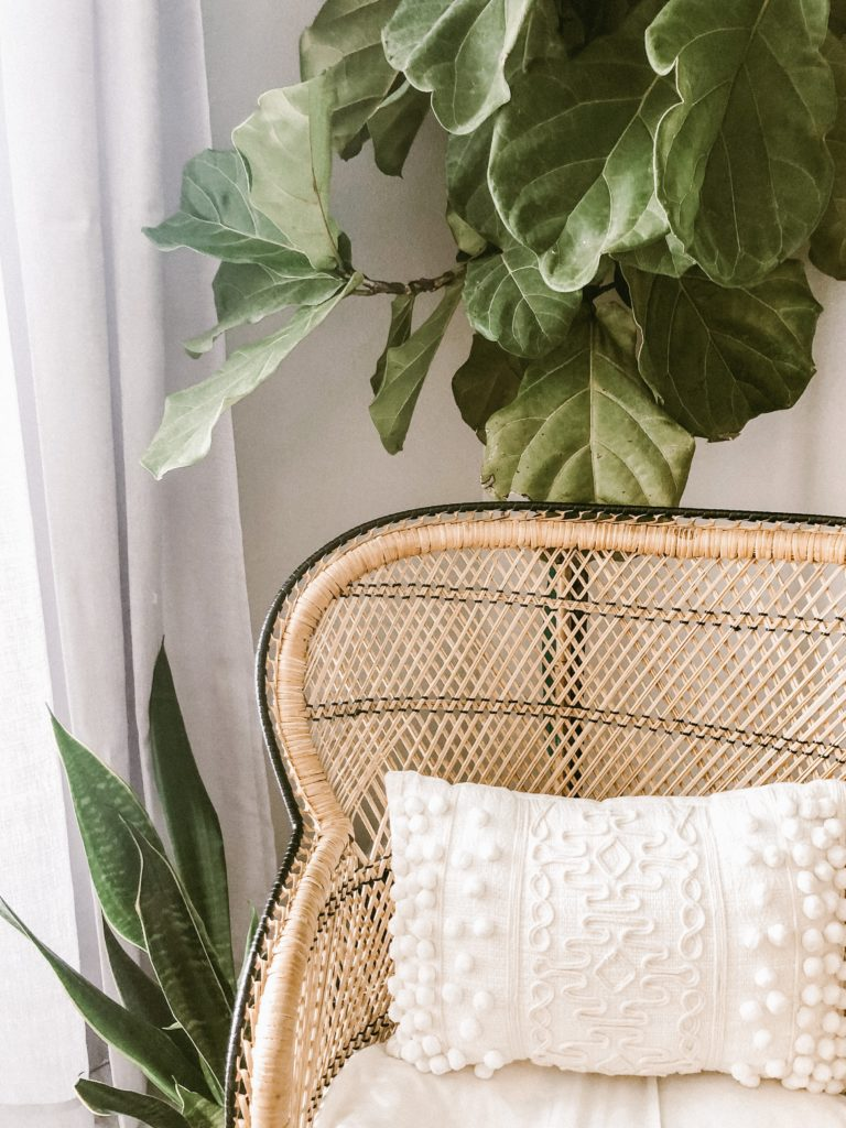 bamboe in je interieur